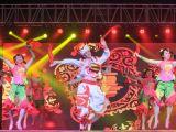 首届榆林舞蹈大赛颁奖盛典暨 2017榆林市迎春舞蹈联欢晚会剪影