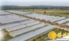 榆阳 精准施策释放农业发展活力
