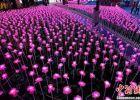 数千朵玫瑰花灯绽放京城