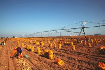 将榆林建设为全国旱作农业发展样板区