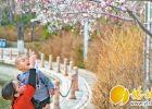 春暖花开 市民可外出赏花啦
