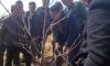 清涧县折家坪镇为农户进行培训