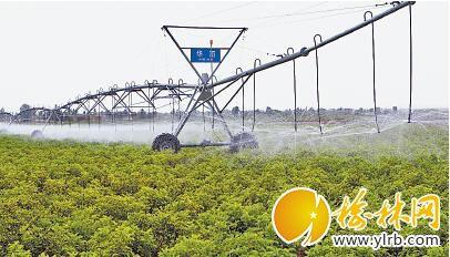现代农业从毛乌素兴起。