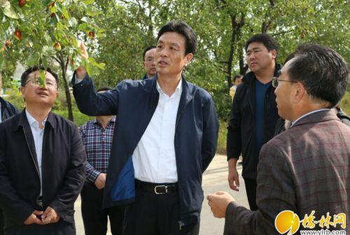 戴征社到佳县调研红枣产业发展情况