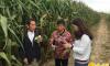 靖边大学生村官王娜试种新品种玉米成功