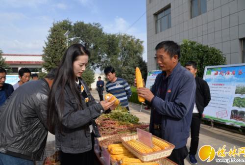 """靖边县海则滩镇庆祝首个""""中国农民丰收节"""""""