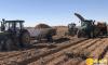榆阳区3万亩大漠马铃薯喜获丰收