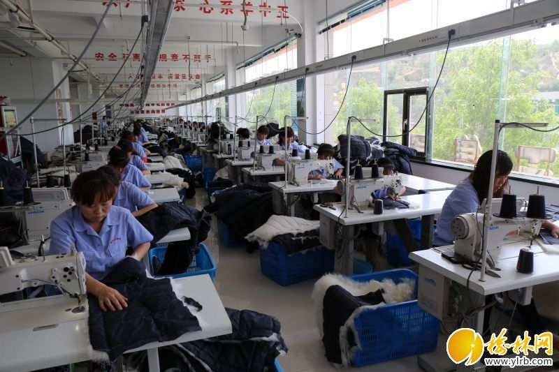 羊中王集团羊绒材料制衣?#23548;?#24037;人正在赶制棉衣。