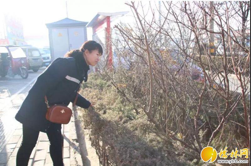 12月17日,早8点,冯春照例在自己负责的榆佳路片区仔细检查卫生清洁情况,她刚从所里得知,昨天被救助的女士在家休养,目前情况稳定。