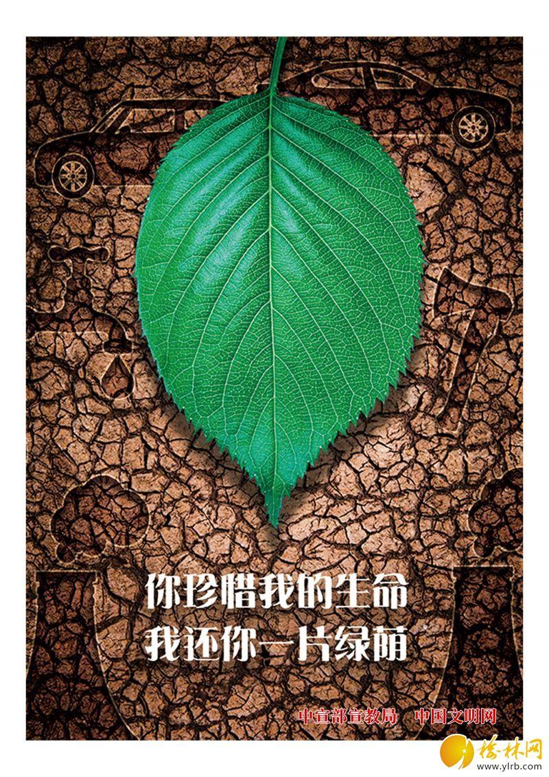 26《守衛綠色》