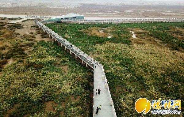 (美麗中國)(1)景色迷人的閩江河口國家濕地公園